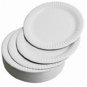 paperplate7inch